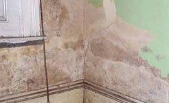 Damp Proofing, Damp Rising Treatment & Damp Rising Specialist